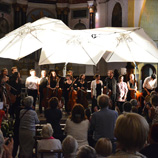 Festival Cello Fan 2015